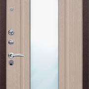 Панели двери с зеркалом
